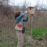 Checking bird box
